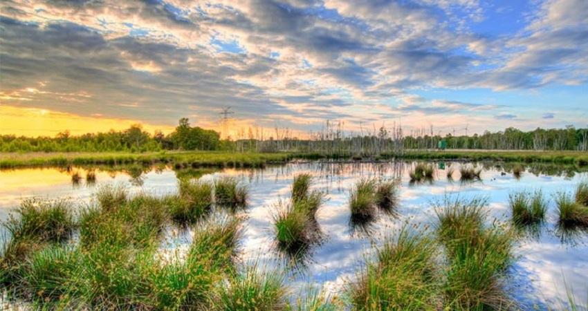 hamoun-lagoon